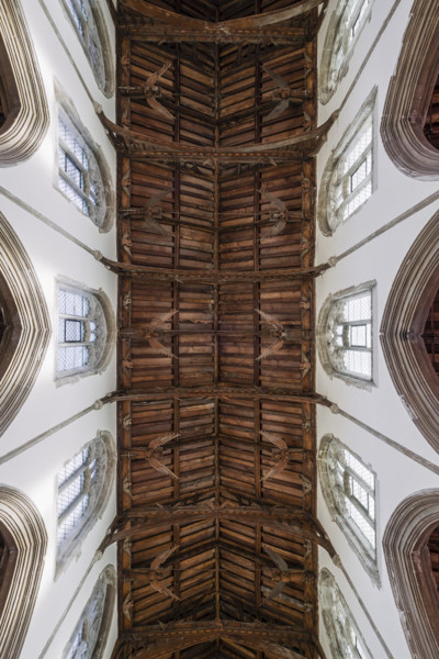 Picture of St Mary Mildenhall, Suffolk: the hammerbeam roof with its carved angels