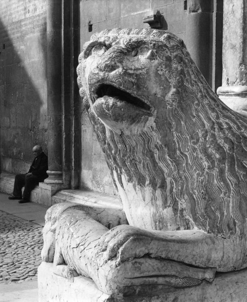 Picture of Cathedral of San Geminiano, Modena: close-up of one of the two lions flanking the Porta Regia
