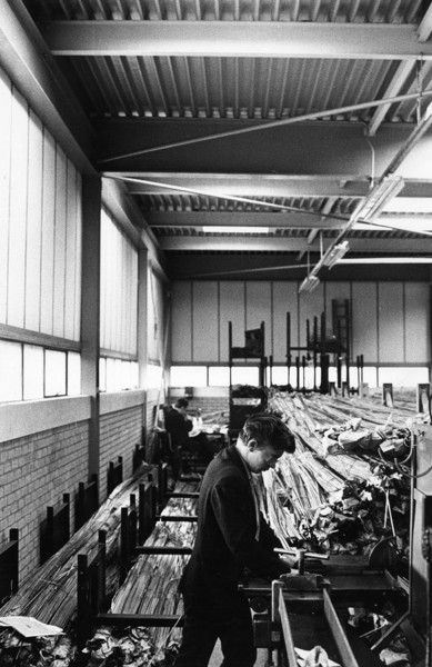 Picture of Factory unit, Astmoor Industrial Estate, Runcorn New Town, Cheshire