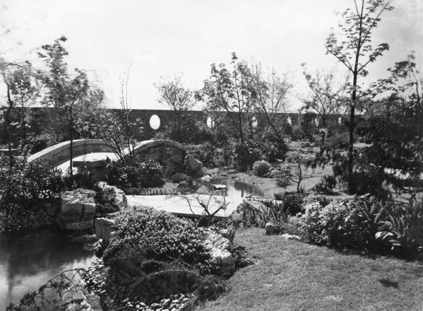 Picture of Derry and Toms roof garden, High Street Kensington, London: the English woodland garden