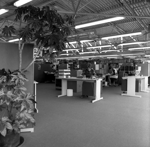Picture of Habitat warehouse, Wallingford, Oxfordshire: the open plan office area