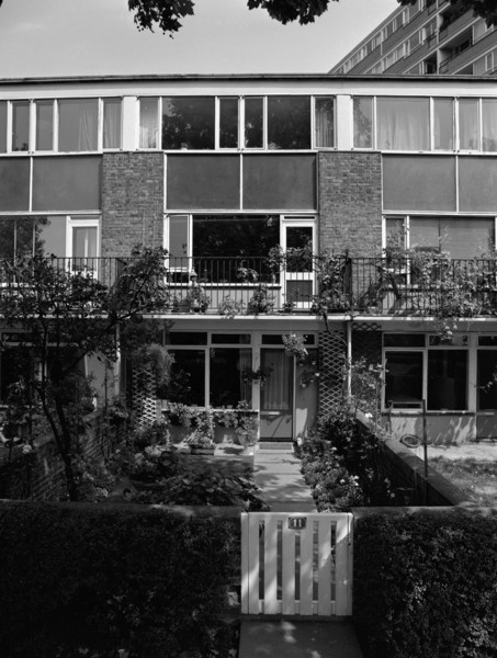 Picture of Churchill Gardens Estate, Pimilico, London: the garden for one of the houses